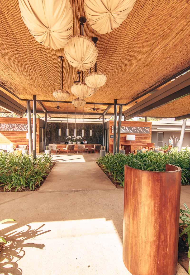 el mangroove costa rica lobby