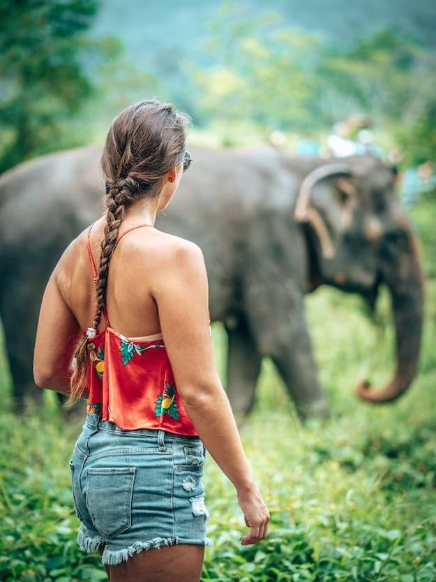 Thailand - Elephant Sanctuary