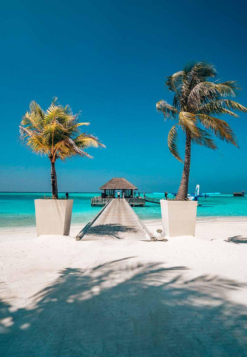 arrival at niyama maldives