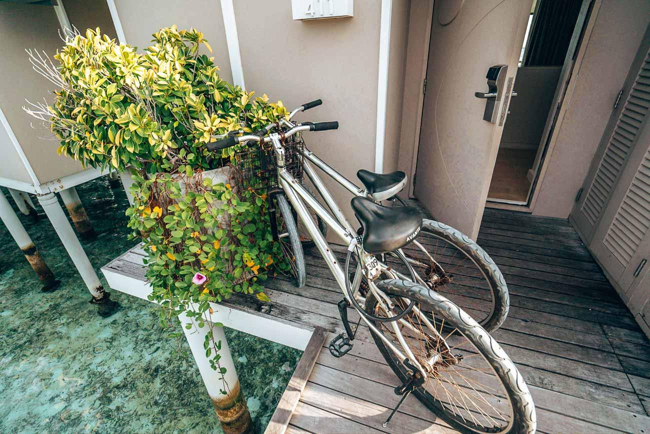 bikes at lux south ari