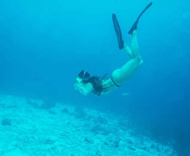 Curacao-Destination-swimming-turtles