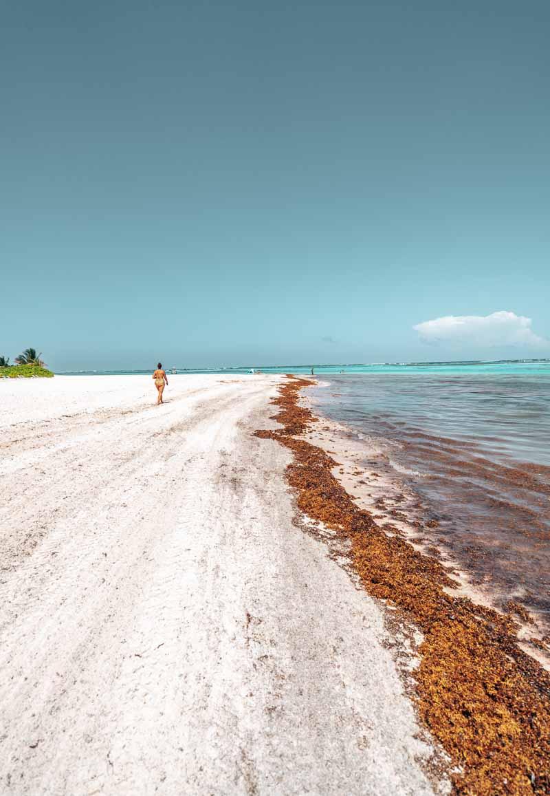 Westin Punta Cana Beachfront